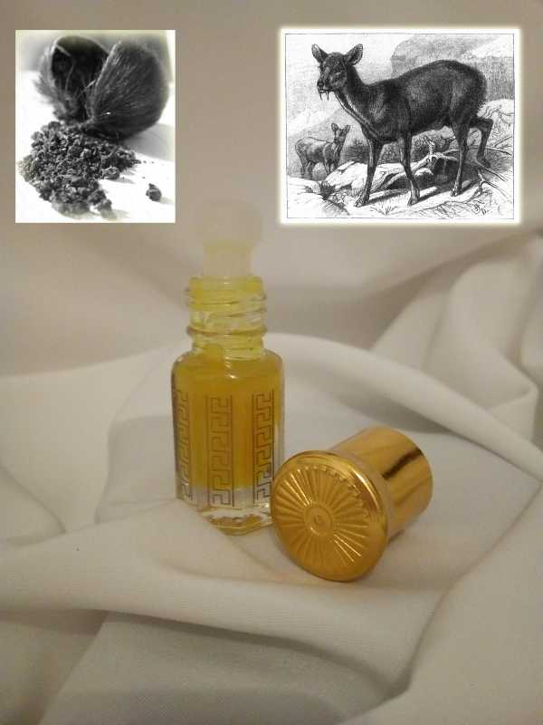 Musk Himalaya - with Deer Musk | 3ml - 30ml