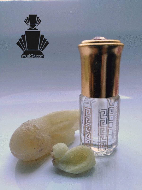 Ethereal Frankincense Oil Superior | 1ml - 3ml
